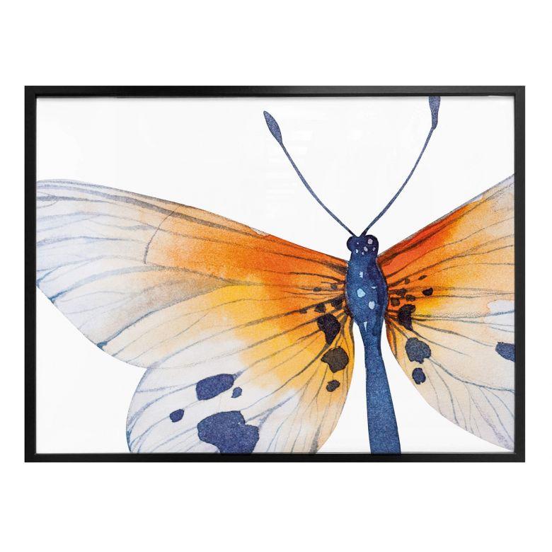 Poster Kvilis - Schmetterling 02