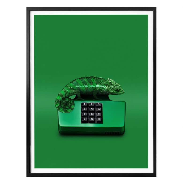 Poster Loose - Chamelephone