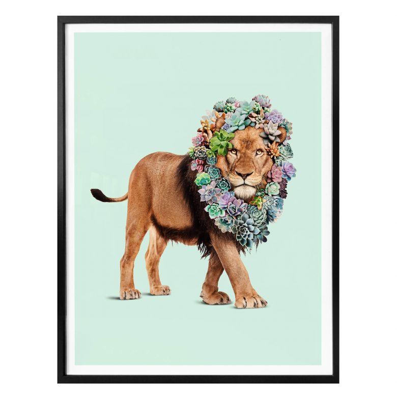 Poster Loose - Succulent Lion
