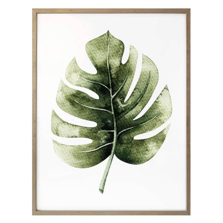 Poster Kvilis - Monstera Leaf