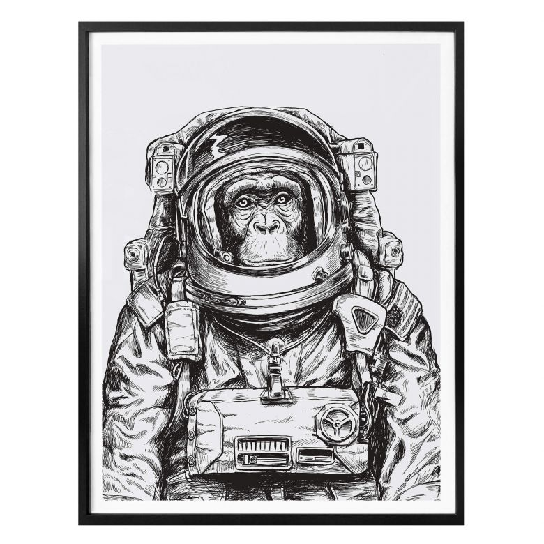 Poster Space Monkey