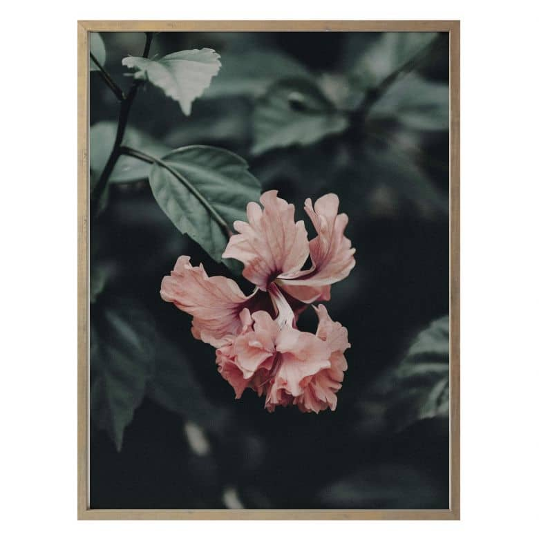 Poster Tropische Blüte