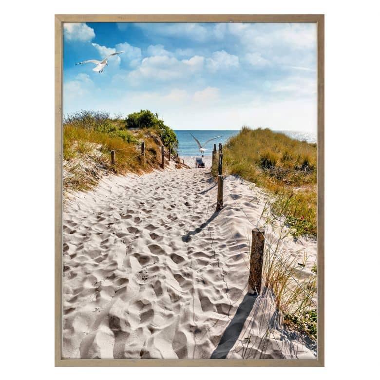 Poster - Il cammino per la spiaggia