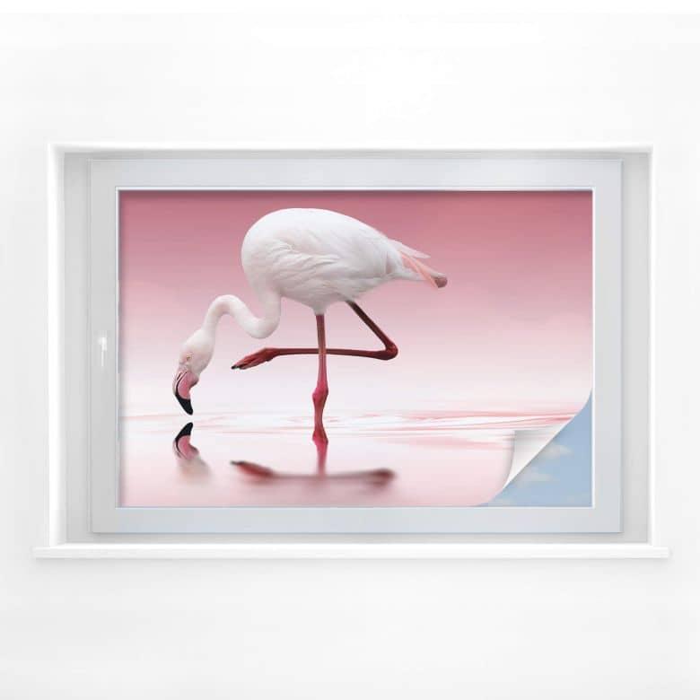 Sichtschutz Reindl - Pink Flamingo