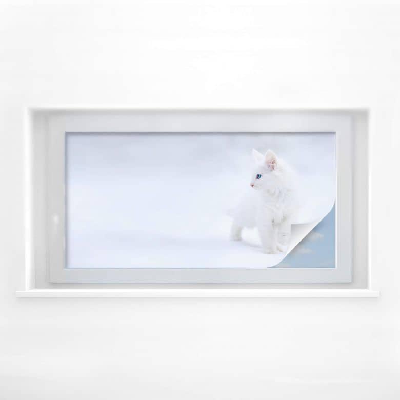 Sichtschutzfolie Prexus - Weißer als Schnee - Panorama