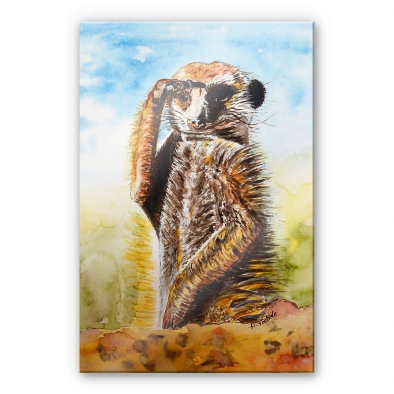 Acrylglasbild Toetzke - Aufmerksames Erdmännchen