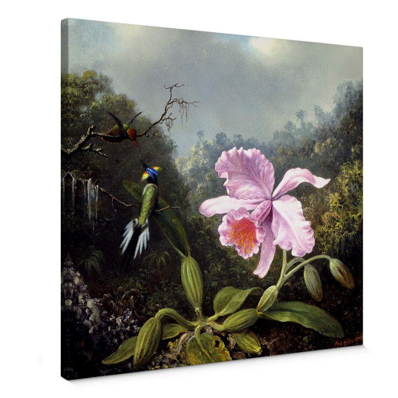Leinwandbild Heade - Stillleben mit Orchidee und Kolibris