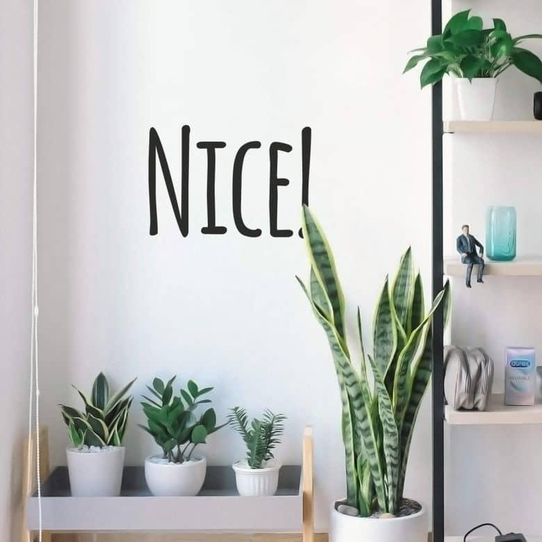 Wall sticker Nice!