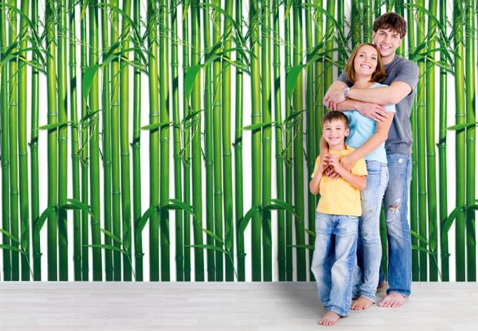 fototapete papiertapete bambus wald feng shui mit. Black Bedroom Furniture Sets. Home Design Ideas