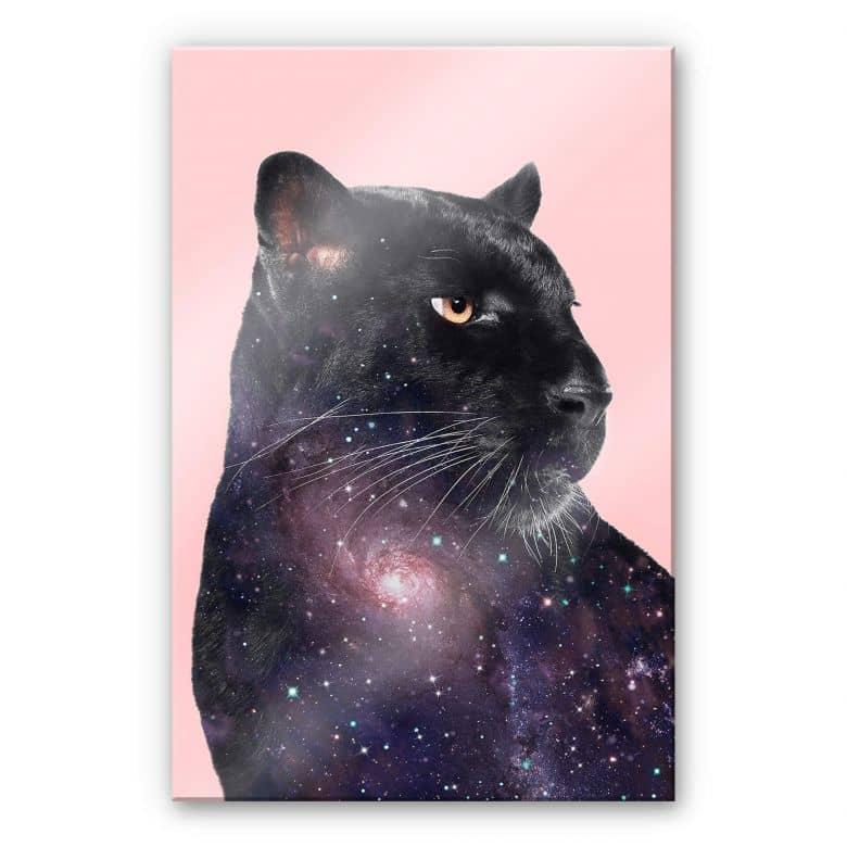 Acrylglasbild Loose – Galaxy Panther