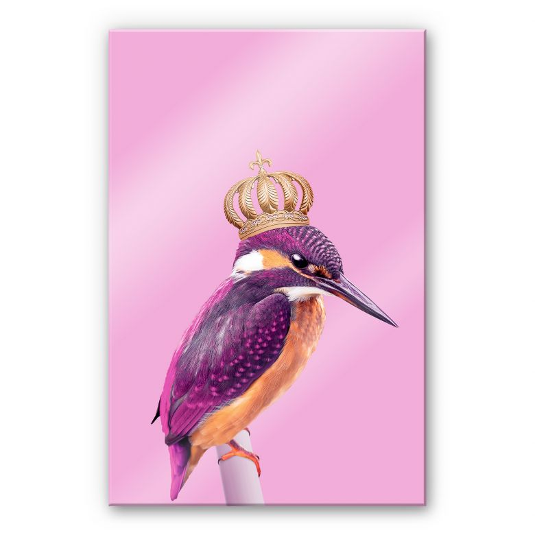 Acrylglasbild Loose - Queenfisher