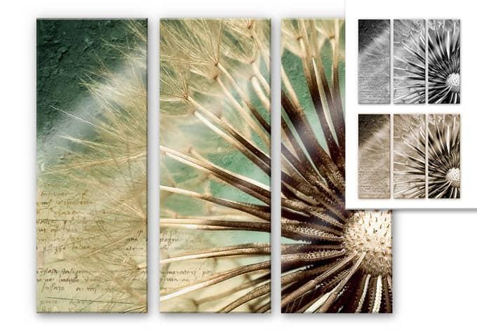acrylglasbild 3 teilig pusteblumen poesie beliebtes motiv auf elegantem acrylglas wall. Black Bedroom Furniture Sets. Home Design Ideas