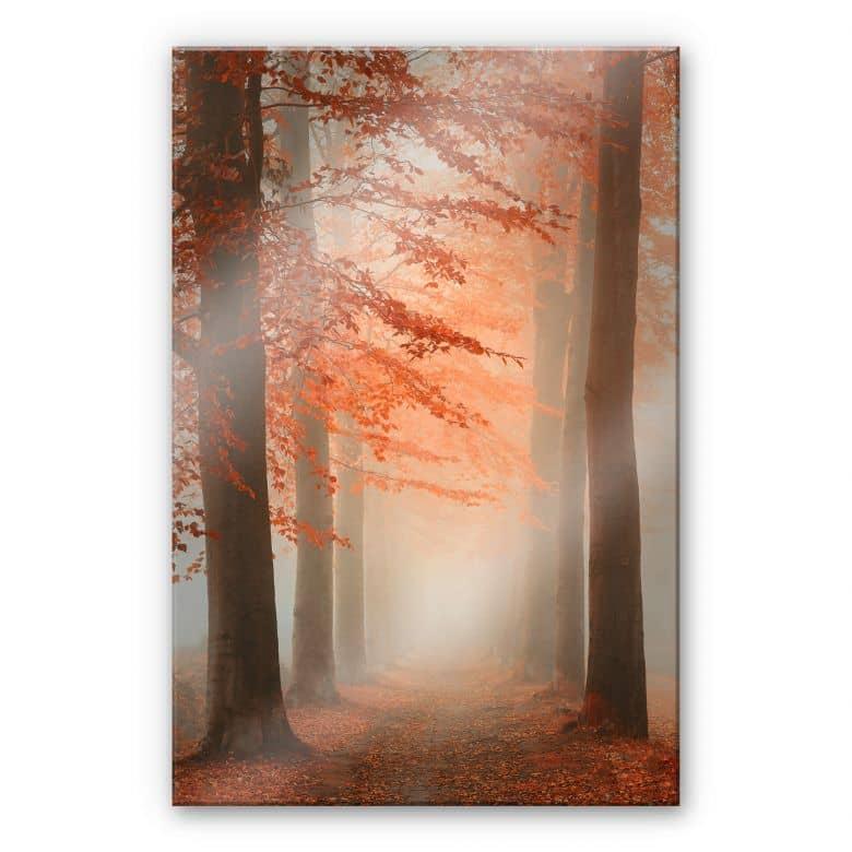Acrylglasbild Dingemans - Herbstträume