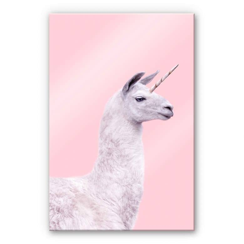 Acrylglasbild Fuentes - Einhorn-Lama