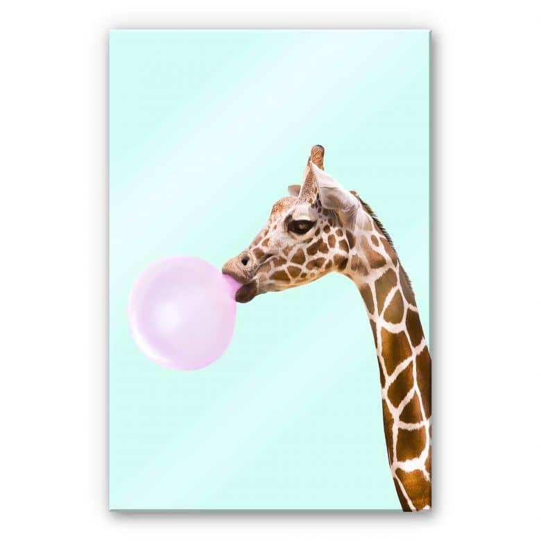 Acrylglasbild Fuentes - Giraffe und ihr Kaugummi
