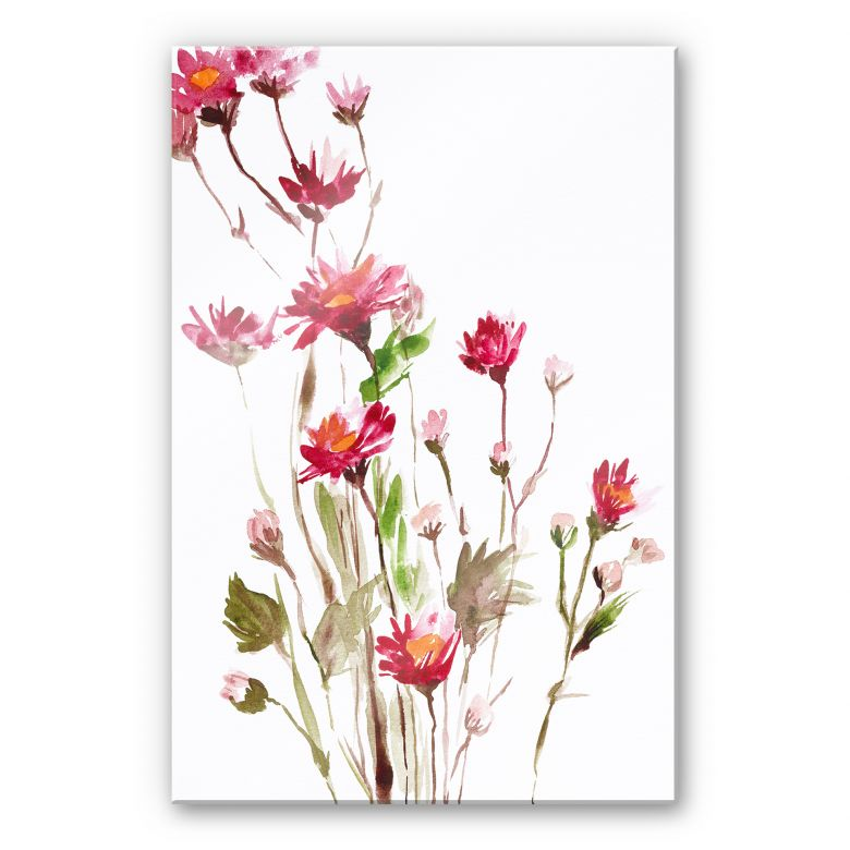 Acrylglasbild Illustrierte Wildblume