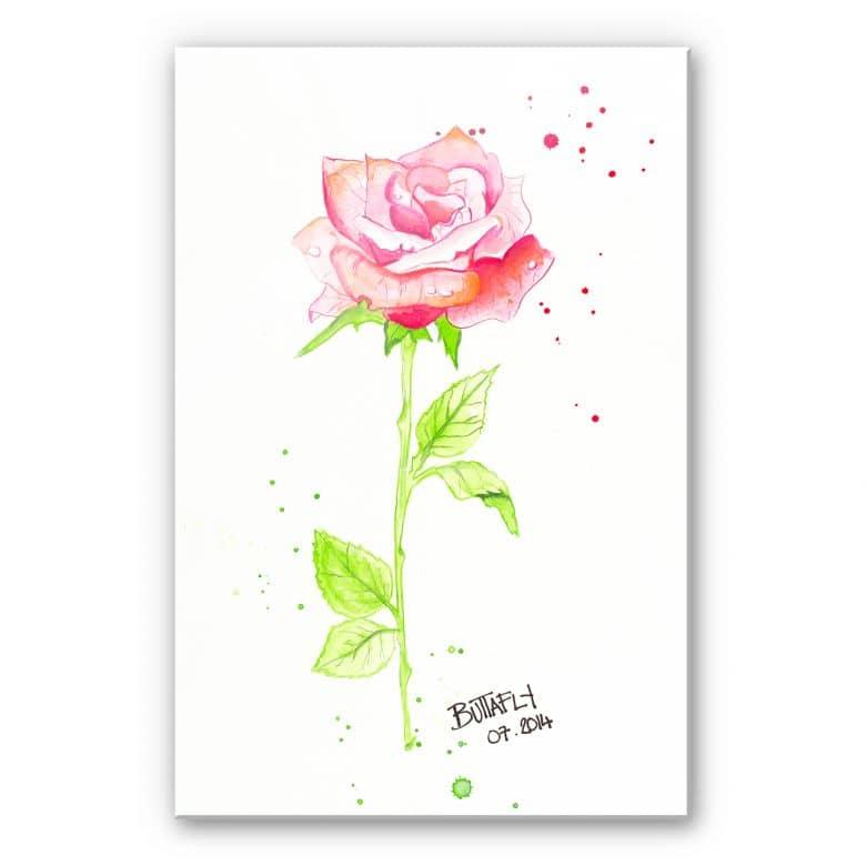 Acrylglasbild Buttafly - Rose