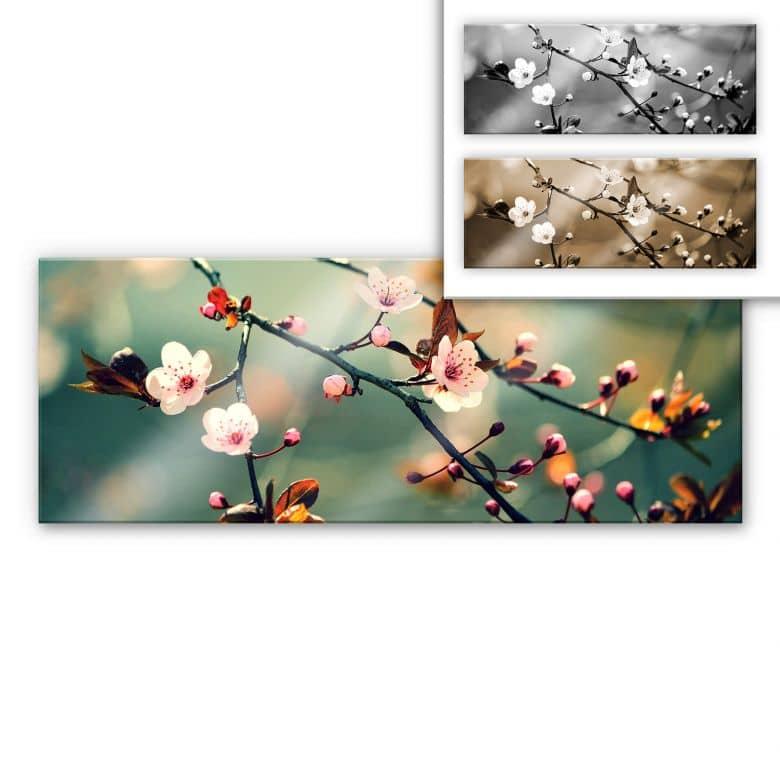 Acrylic glass Spring Awakening - Panorama