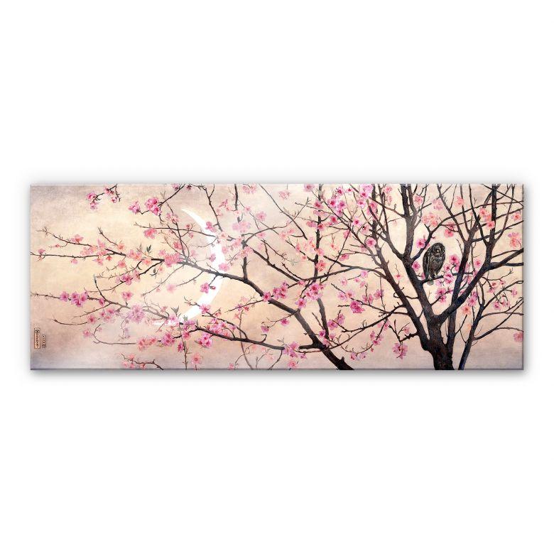 Acrylglasbild Coleman - Primavera - Panorama
