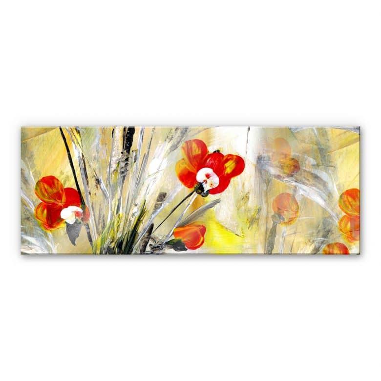 Acrylic glass Niksic - Smaller poppy - Panorama