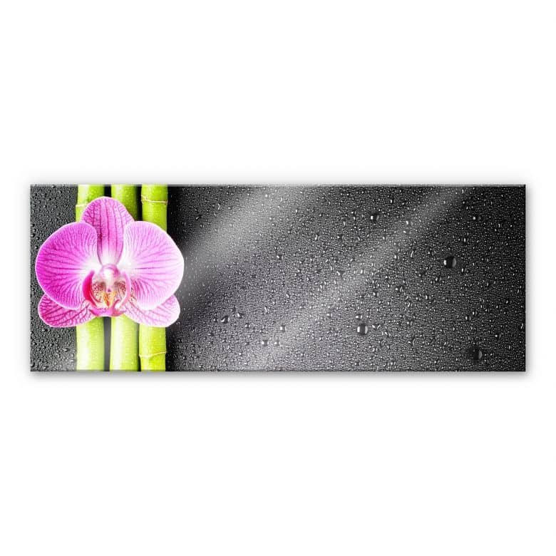Tableau en verre acrylique - Orchid and Bamboo - Panorama (horizontal)
