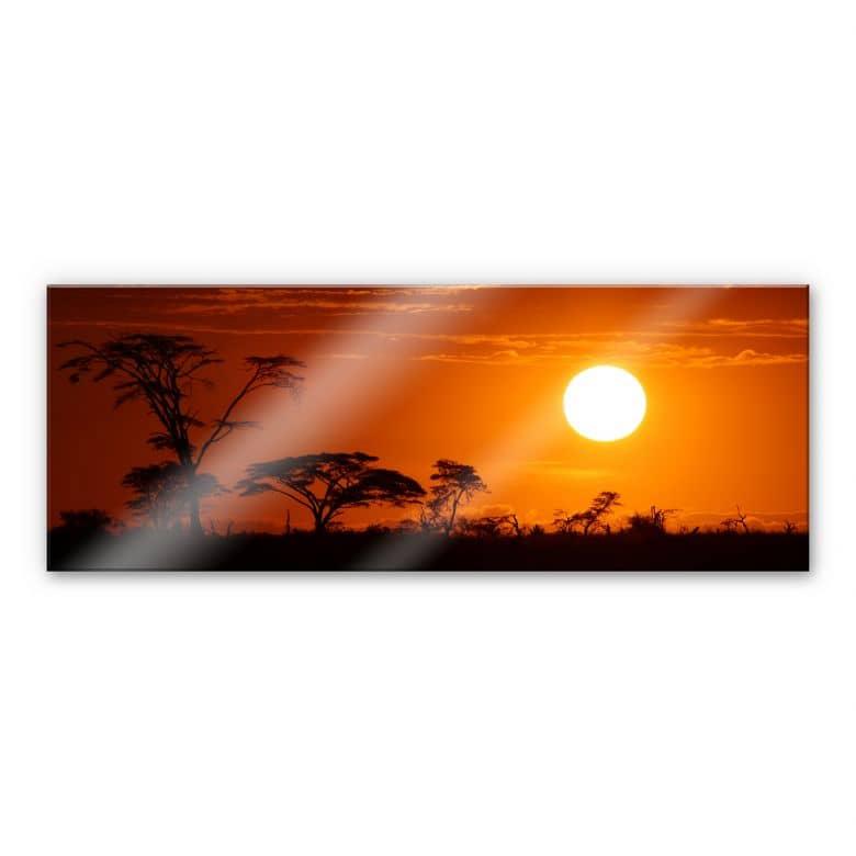 Acrylglasbild Afrikanische Steppe Panorama - wunderschöne Wanddeko ...
