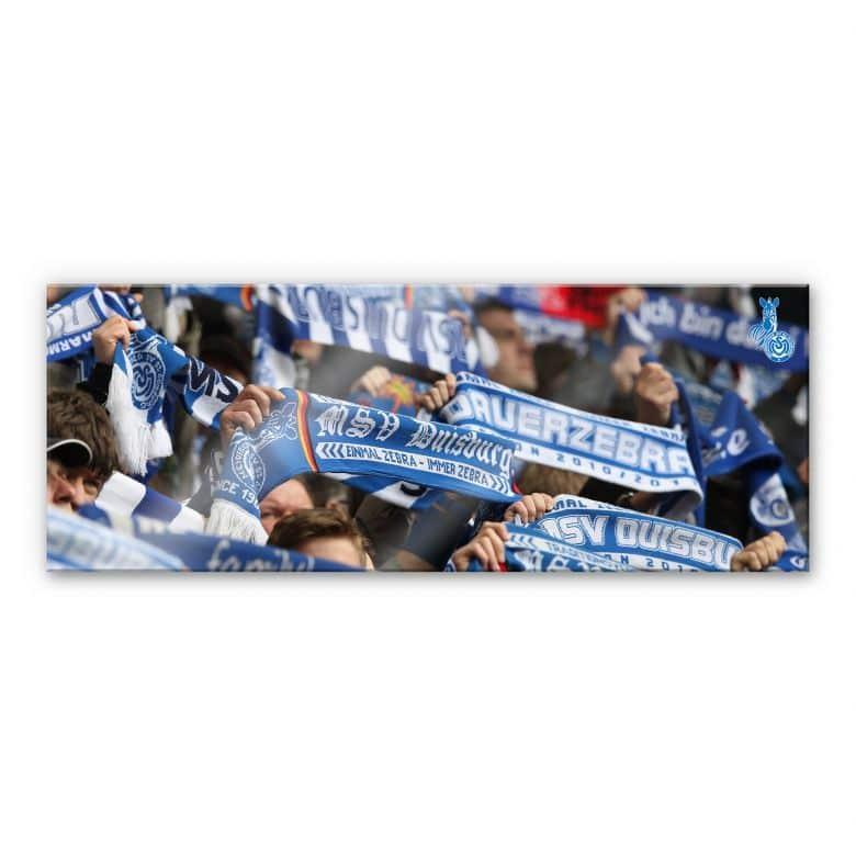 Acrylglasbild MSV Duisburg Fanschals