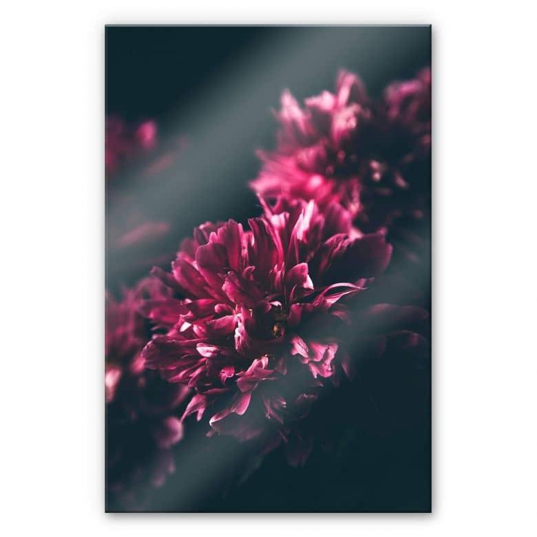 Acrylglasbild Pink Flower Dream 01