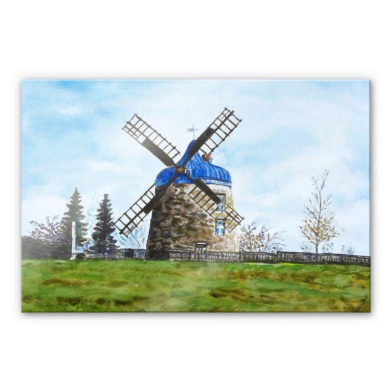 Acrylglasbild Toetzke - Traditionelle Windmühle