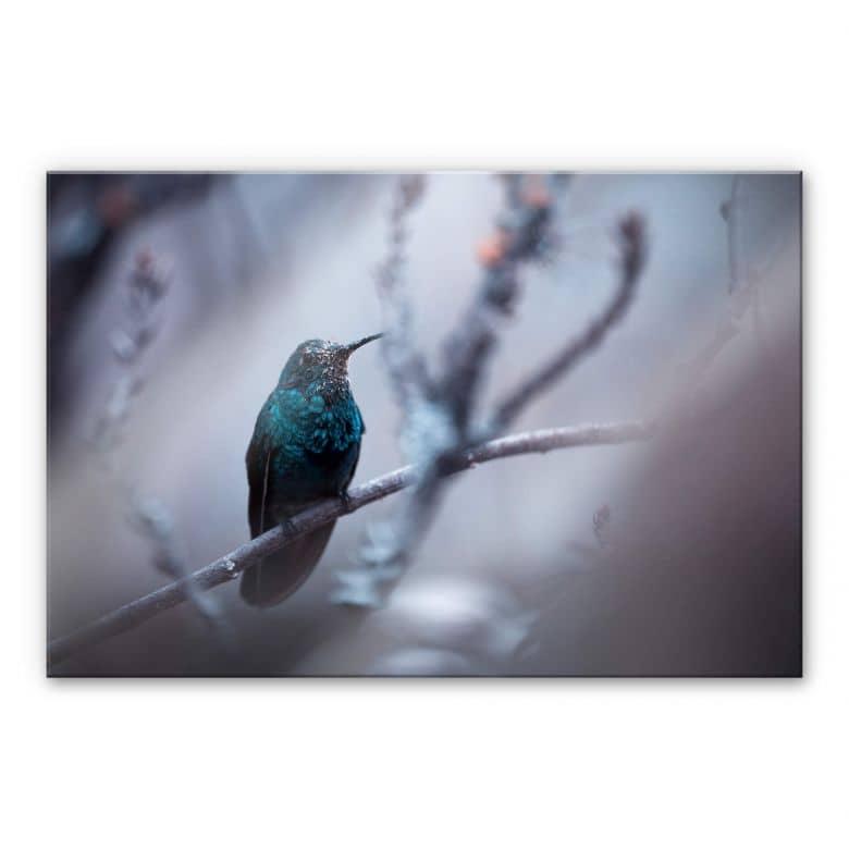 Acrylglasbild Bravin - Electrical Blue