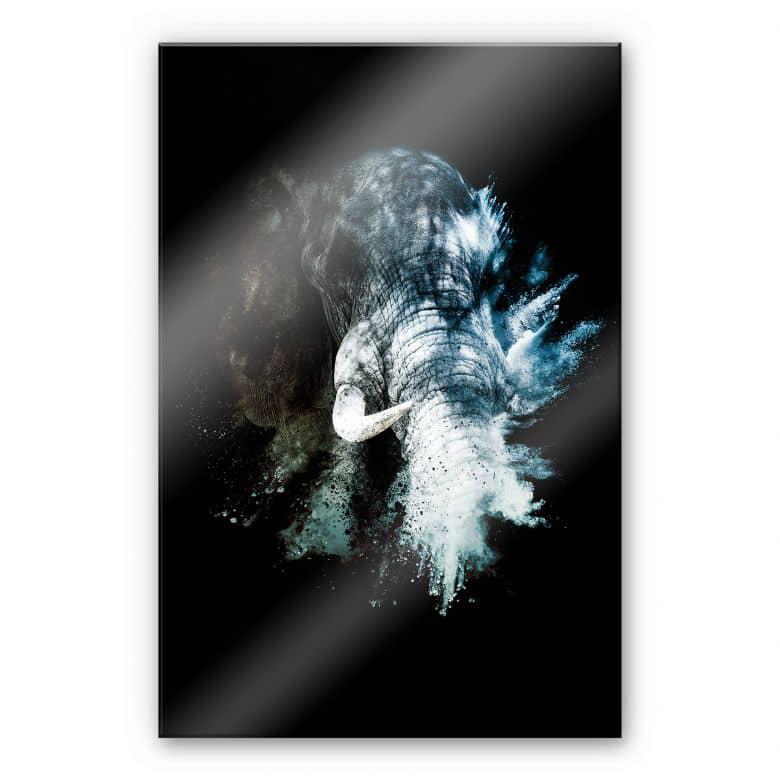 Acrylglasbild Hugonnard – Wild Explosion: Elefant