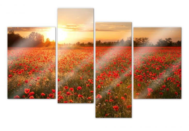 Acrylic glass Field of Poppies in the sunset (4-parts)