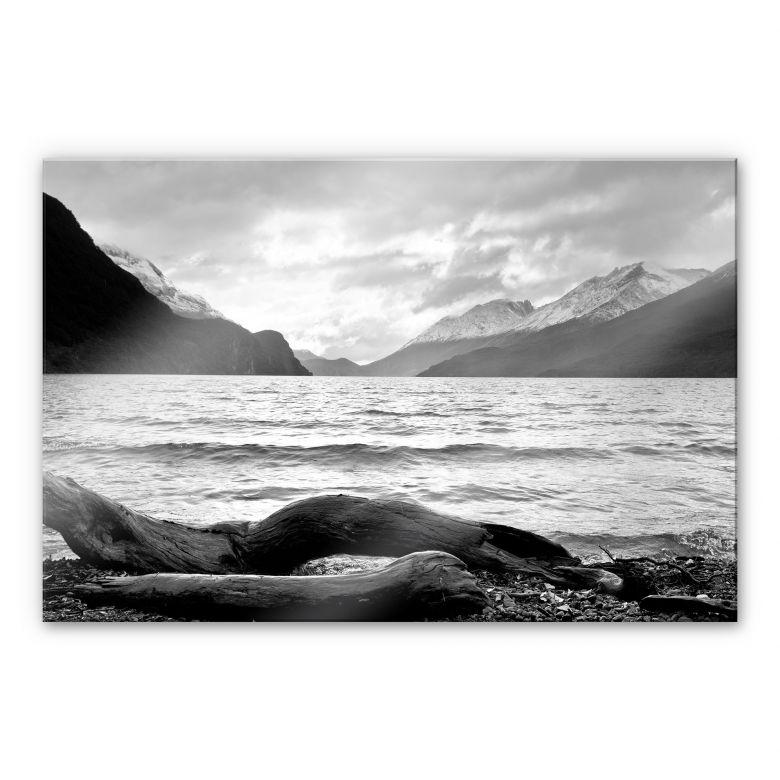 Acrylglasbild Log and Lake