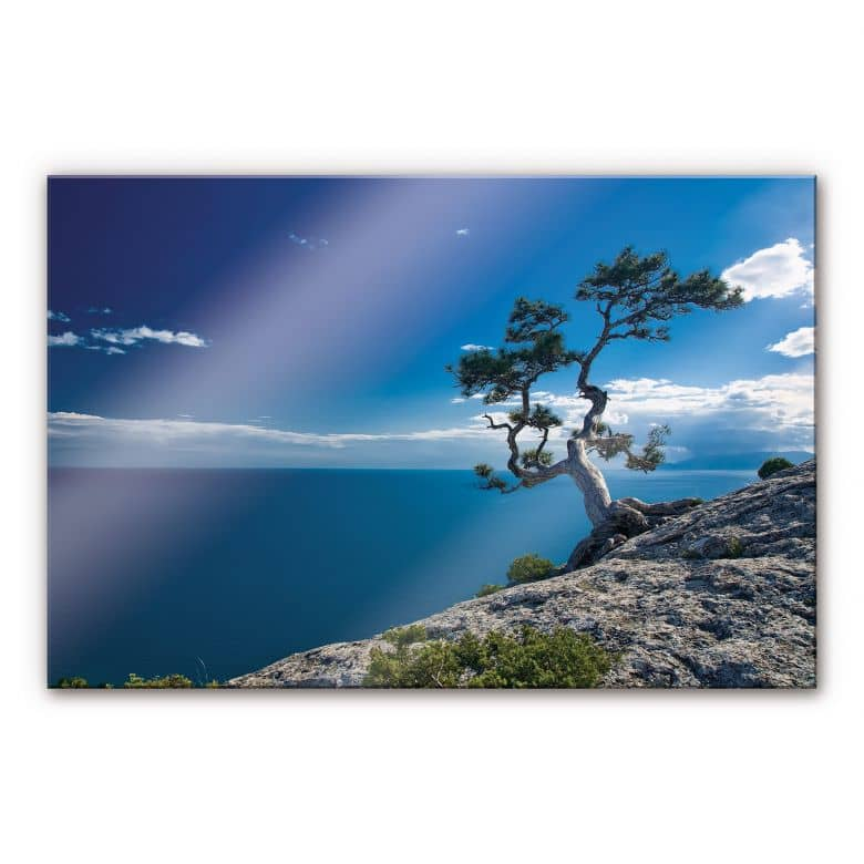 Sea and Tree XXL Wall picture