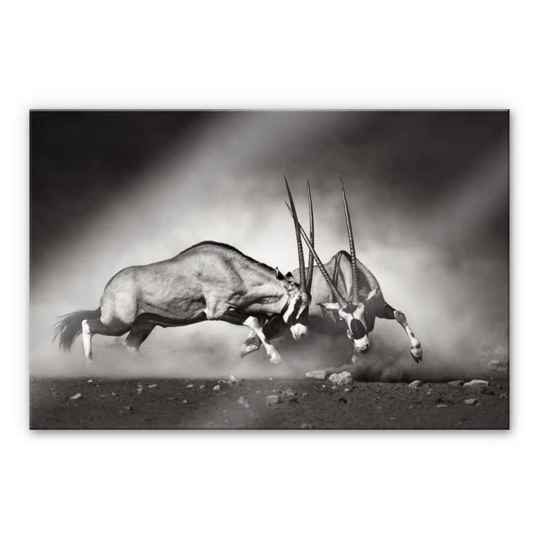 Tableau en verre acrylique - Le Duel