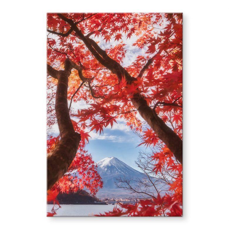 Acrylglasbild Samejima - Rote Blätter