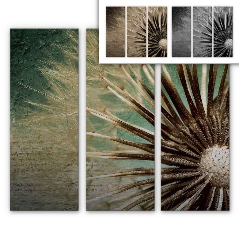 Dandelion Aluminium Print - Poetry (3-piece)
