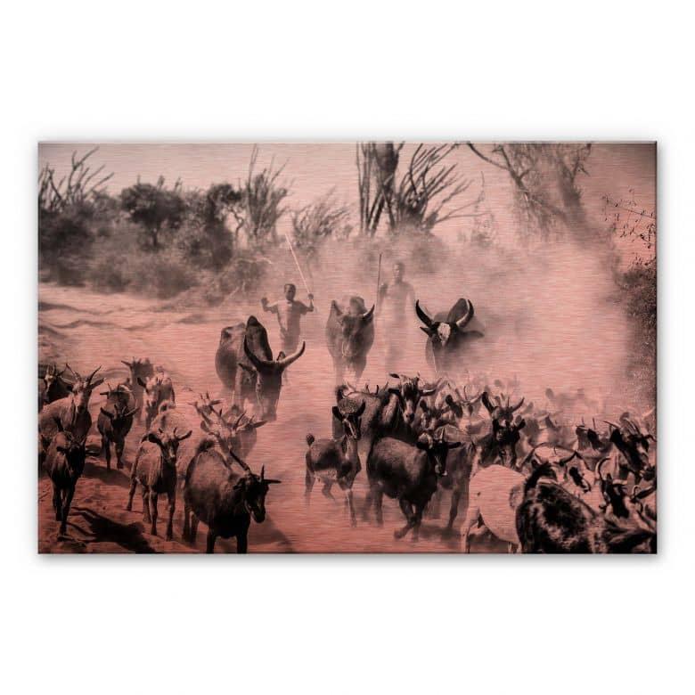 Alu-Dibond with copper effect Tagliarino - Goat herd in Africa