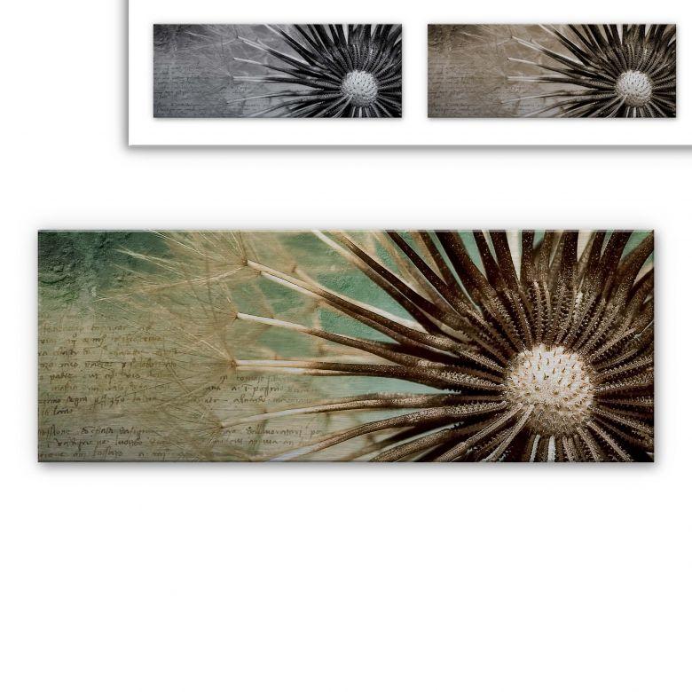 Alu-Dibond Bild Pusteblumen-Poesie - Panorama