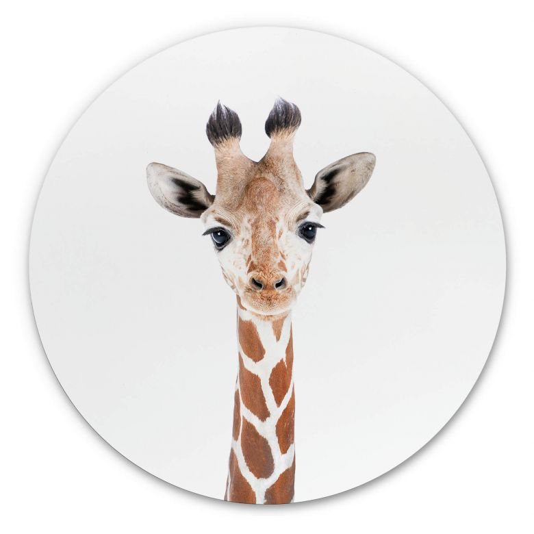 Wandcirkel Sisi & Seb - Baby Giraffe