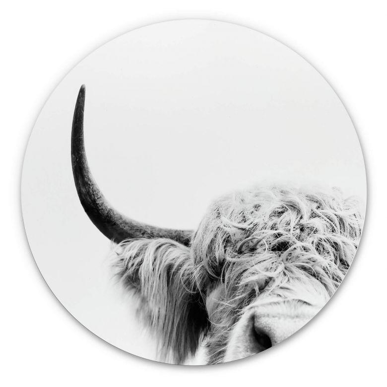 Wandcirkel Sisi & Seb - Bull