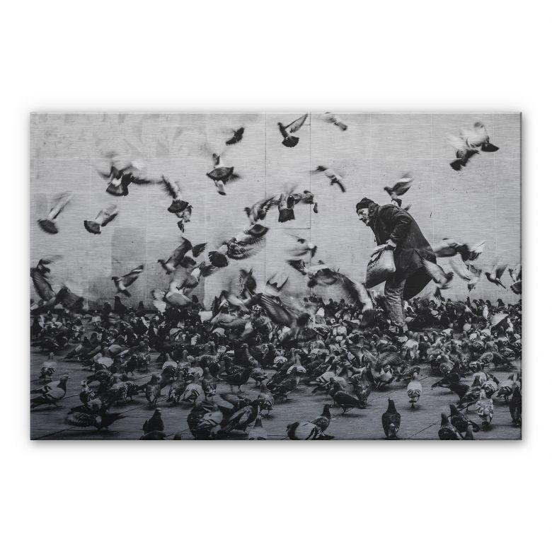 Alu-Dibond mit Silbereffekt - Tauben füttern
