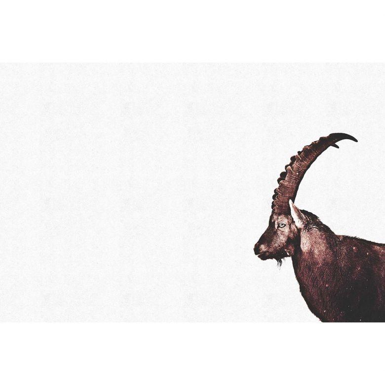 Livingwalls Fototapete ARTist Capricorn Snow mit Steinbock braun, weiß
