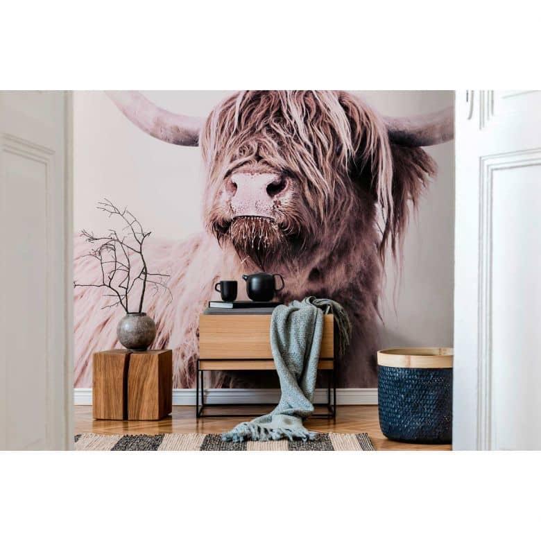 Livingwalls Fototapete ARTist Highland Cattle mit Hochland Rind braun, creme