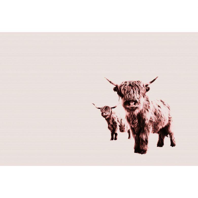 Livingwalls Fototapete ARTist Highland Cows mit Hochland Rindern beige, rosa