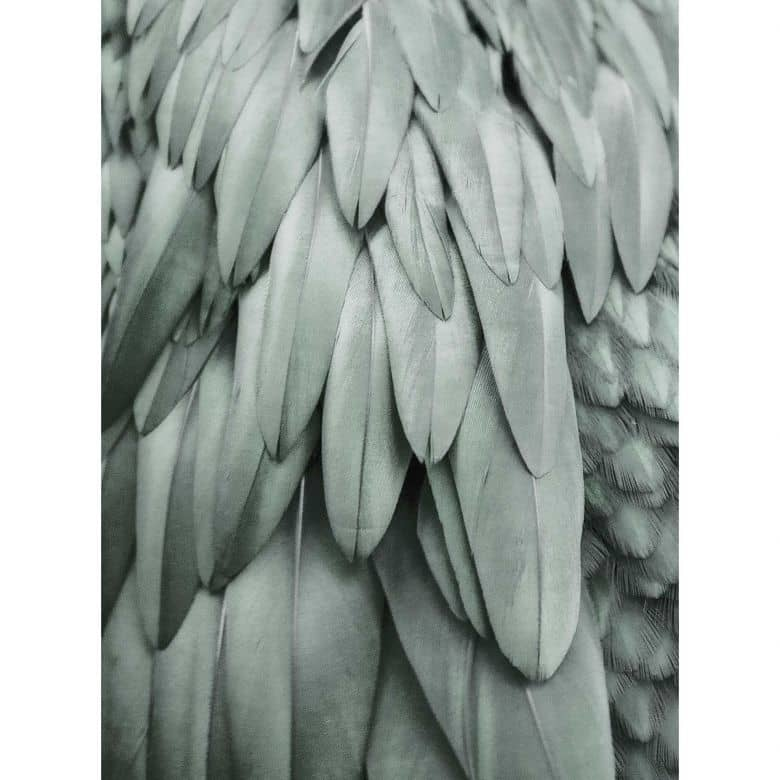 Livingwalls Fototapete ARTist Feathers mit Palmenblättern grün
