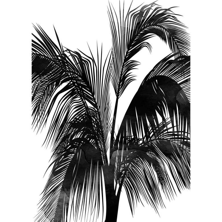 Livingwalls Fototapete ARTist Sunset Boulevard mit Palmenblättern schwarz, weiß