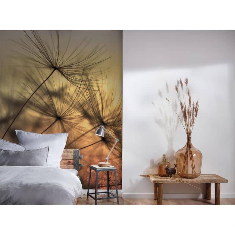 Livingwalls Fototapete Designwalls Flying Dandelion Blumen