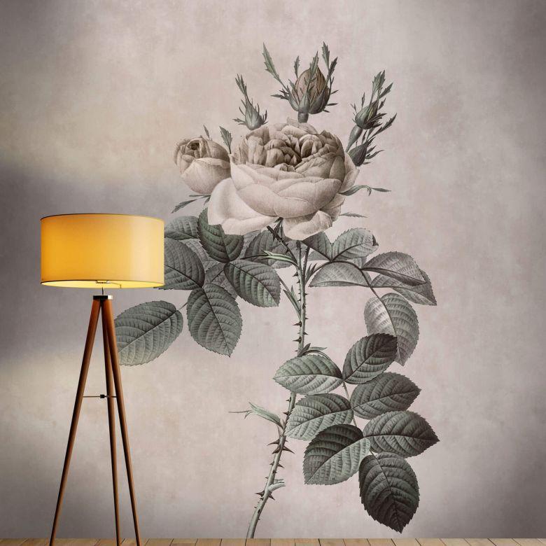 Livingwalls papier peint photo Walls by Patel rose 3
