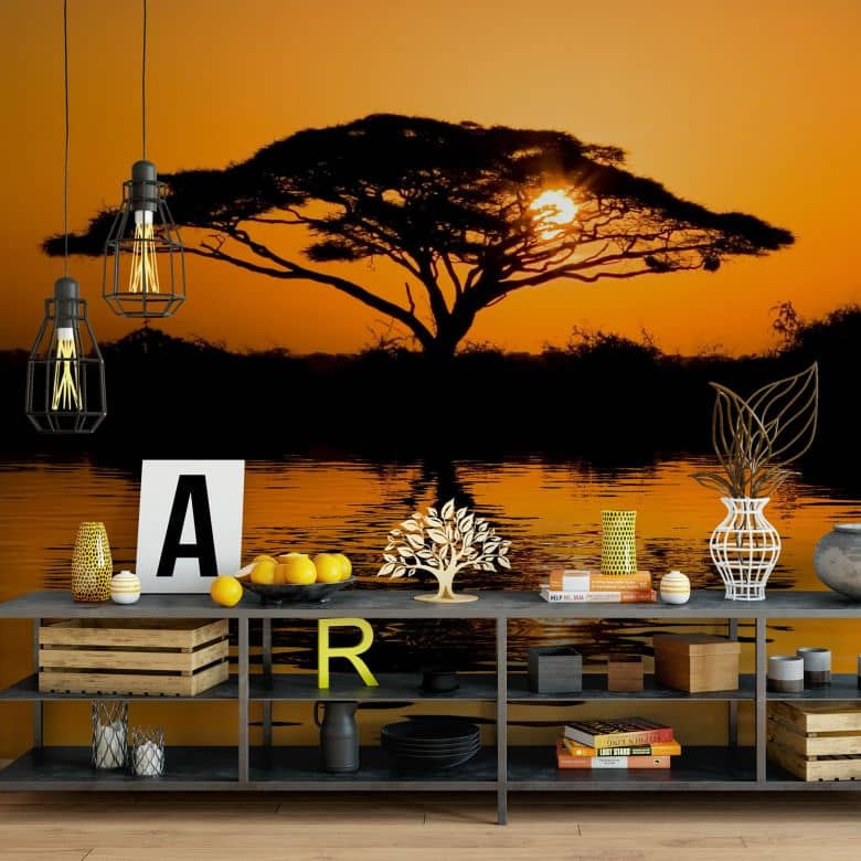 Africa - Photo Wallpaper